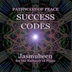 Pathways of Peace Series – Peace Path 8 – Success Codes