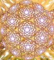 Lotus-grid-small