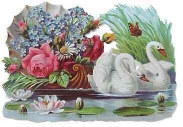 miriam-swan