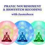 Pranic Nourishment Biosystem Recoding Meditation
